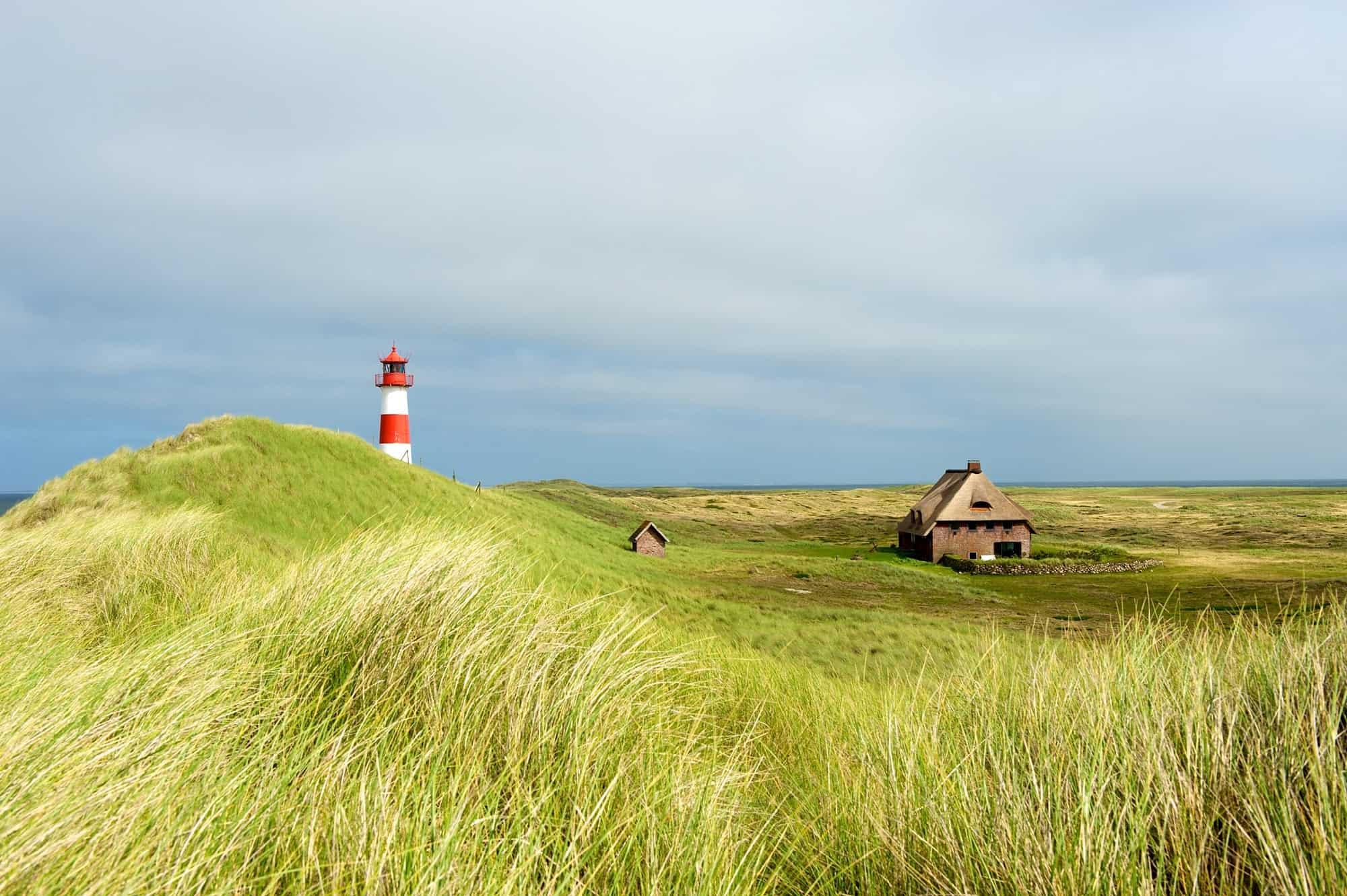 Sylt Island nature