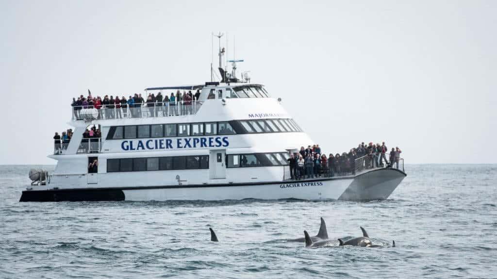 Glacier Express Kenai Fjors National Park