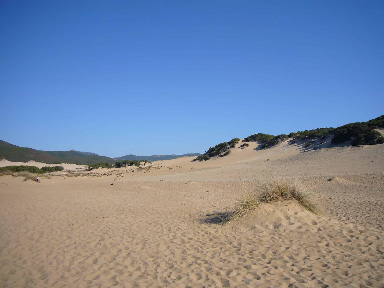 Piscinas Sand Dunes Sardinia Island